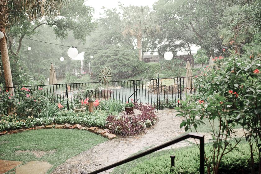 hummingbird house in the rain