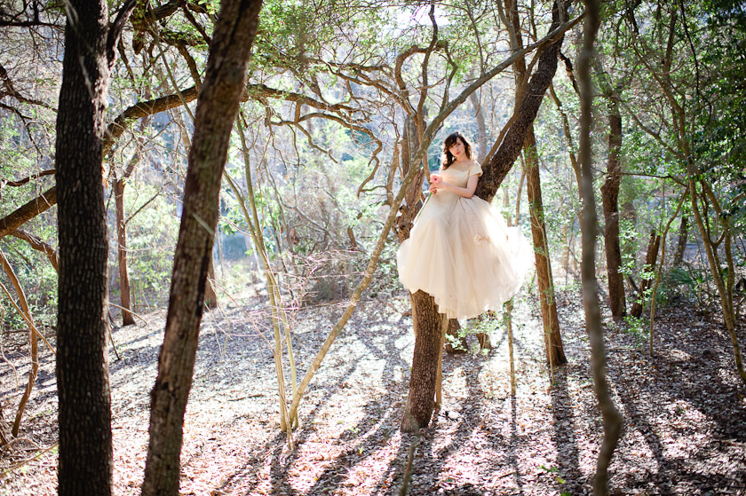 bride on a tree
