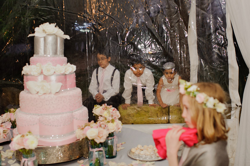 children peeking at wedding cake through the tent wall