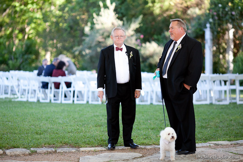 reception and a dog