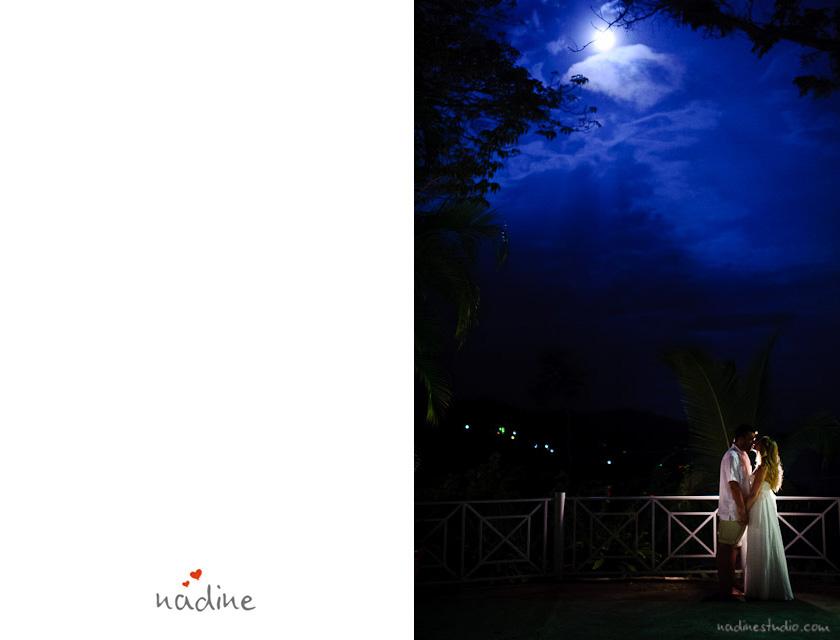 moonlight moonlit photo