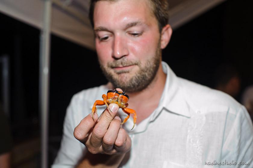 groom eating crab