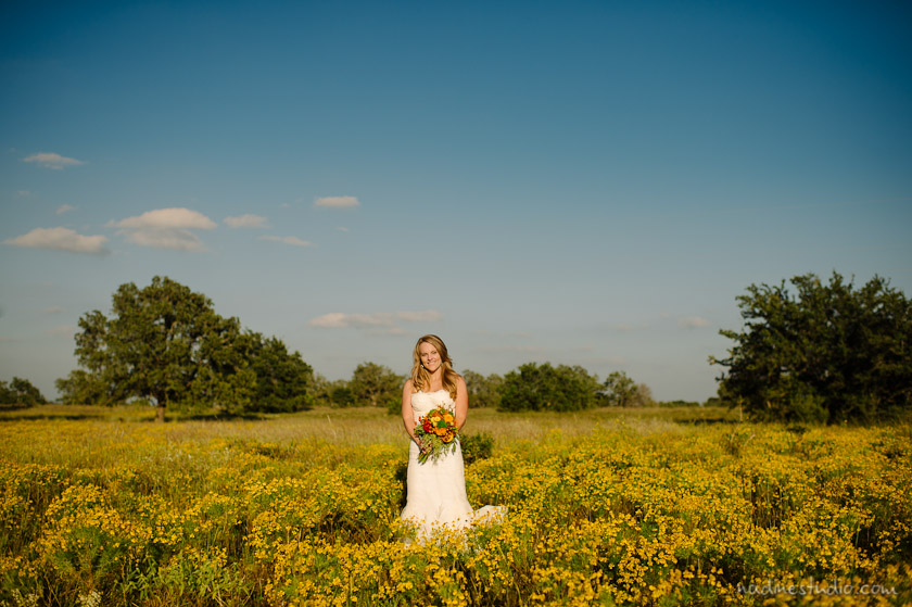 bride in a field of yellow flowers