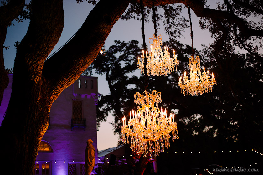 three big chandeliers hanging on a tree