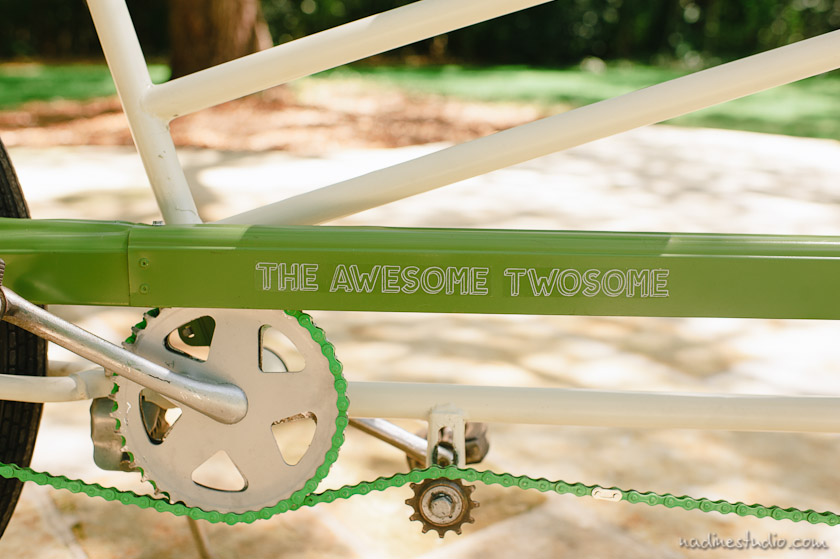 customized awesome twosome on the bicycle