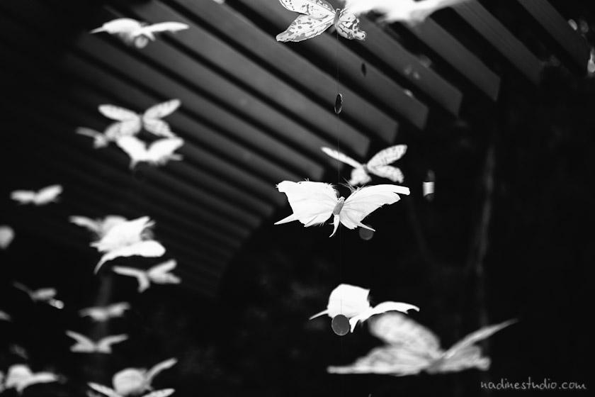 neimam marcus butterfly, neiman marcus butterfly streamers