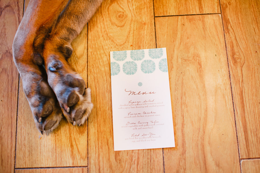 dog and menu