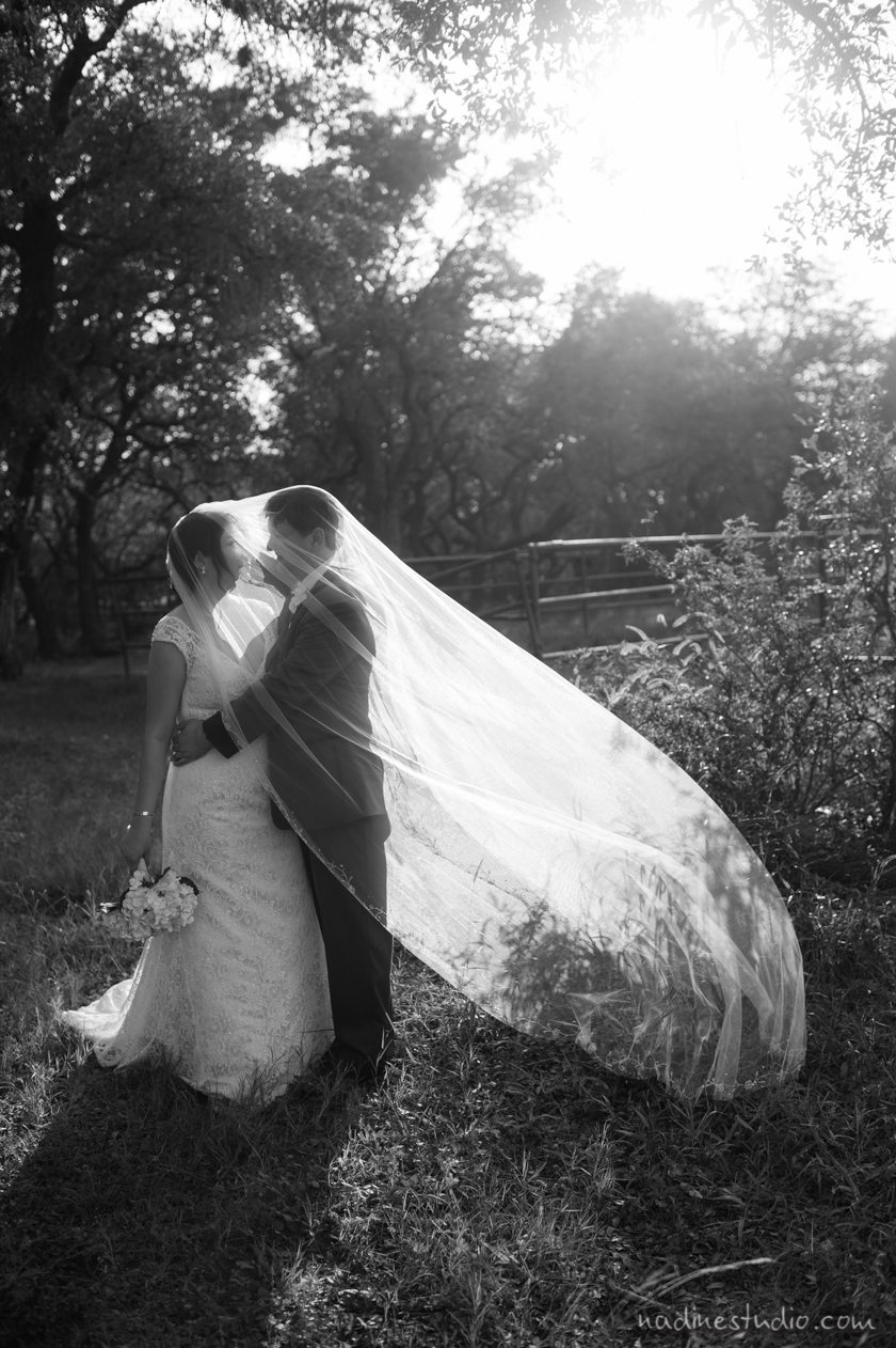 black and white with veil