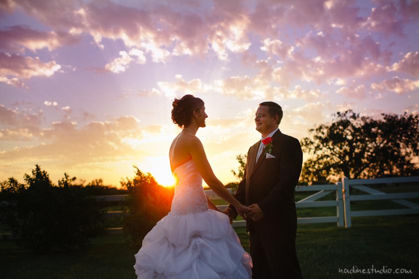 taylor mansion weddings