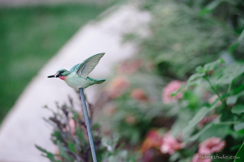 hummingbird house wedding