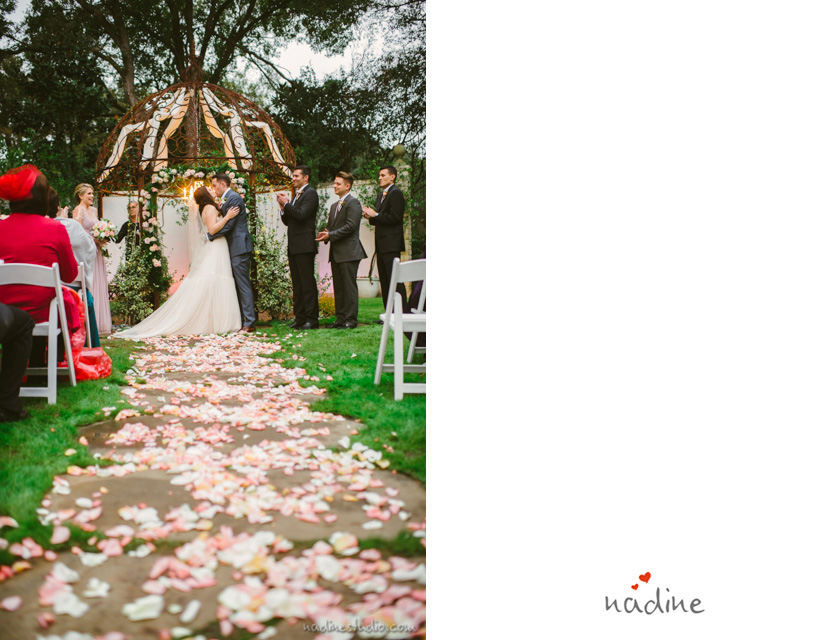 rose petals strewned on the pathway of the ceremony