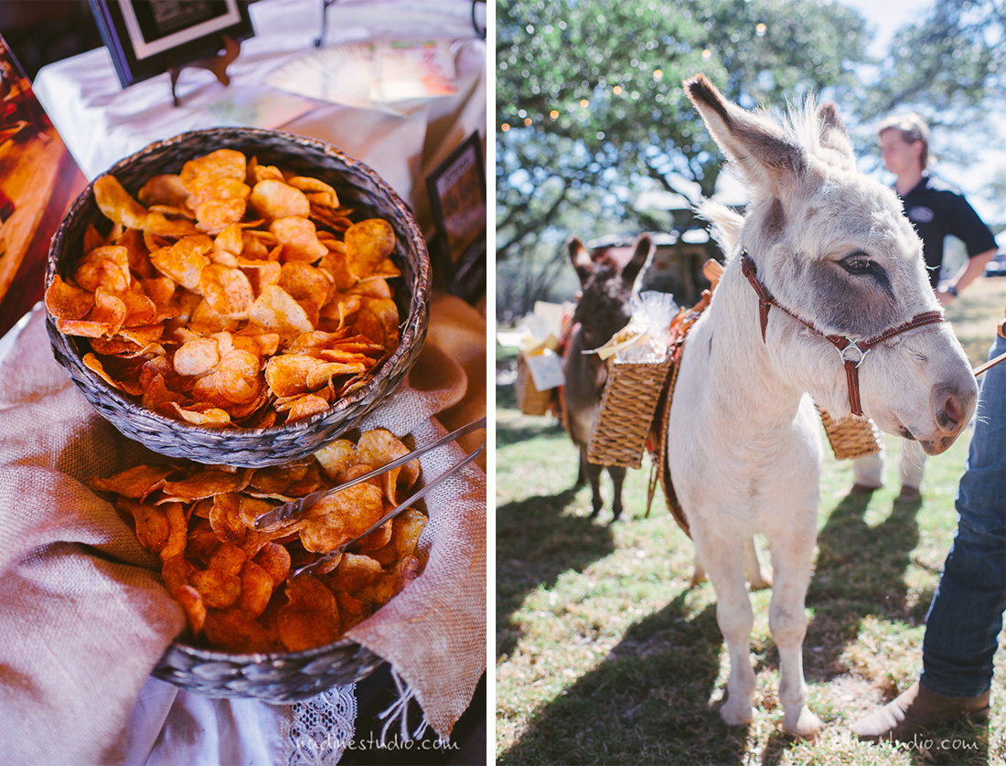 a donkey or mule carrying wedding favors