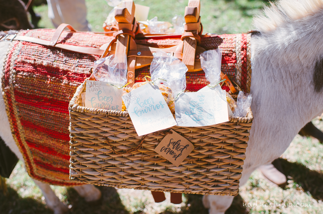 texas donkey carrying wedding favors