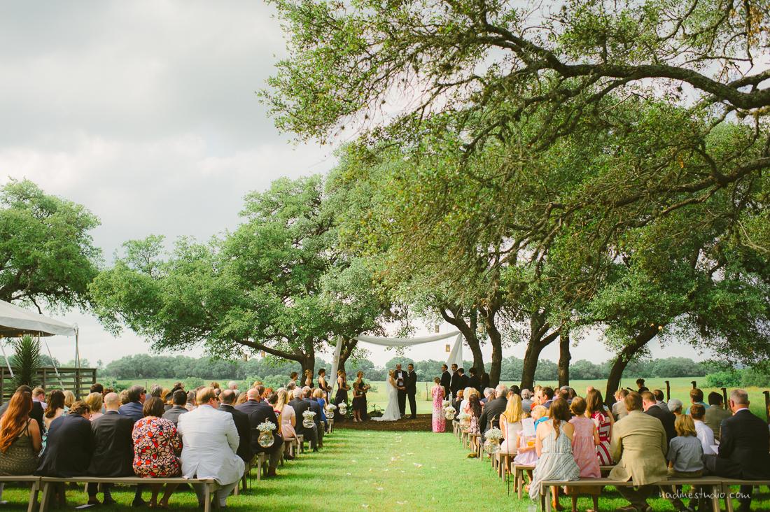 getting married under a giant oak tree