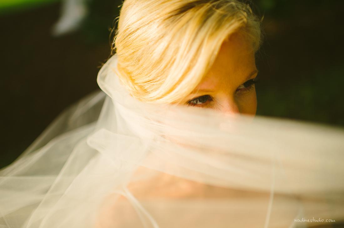 behind hte veil