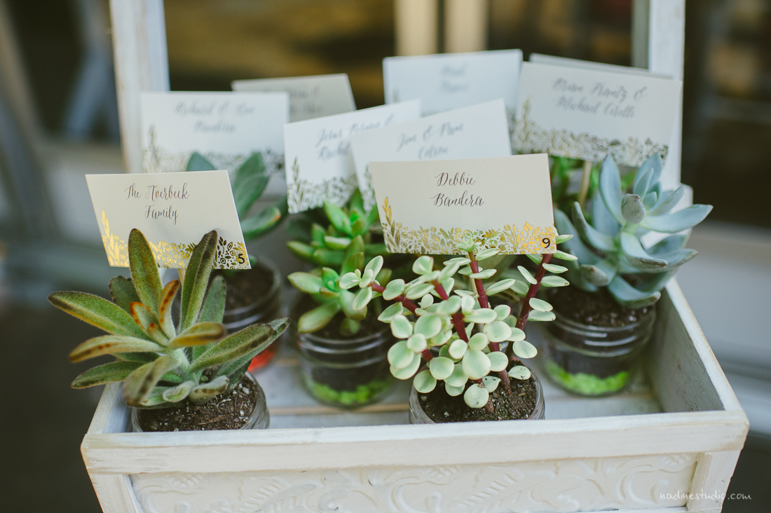 succulant table