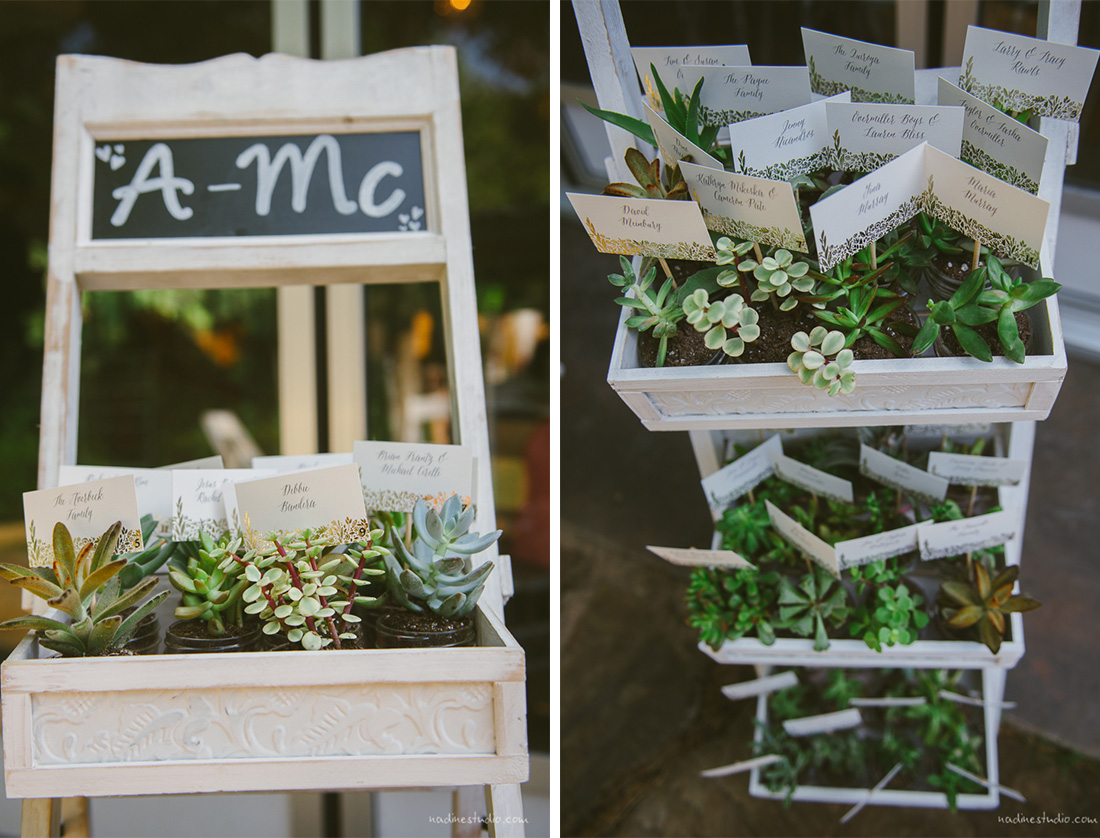 succulant cacti table placements