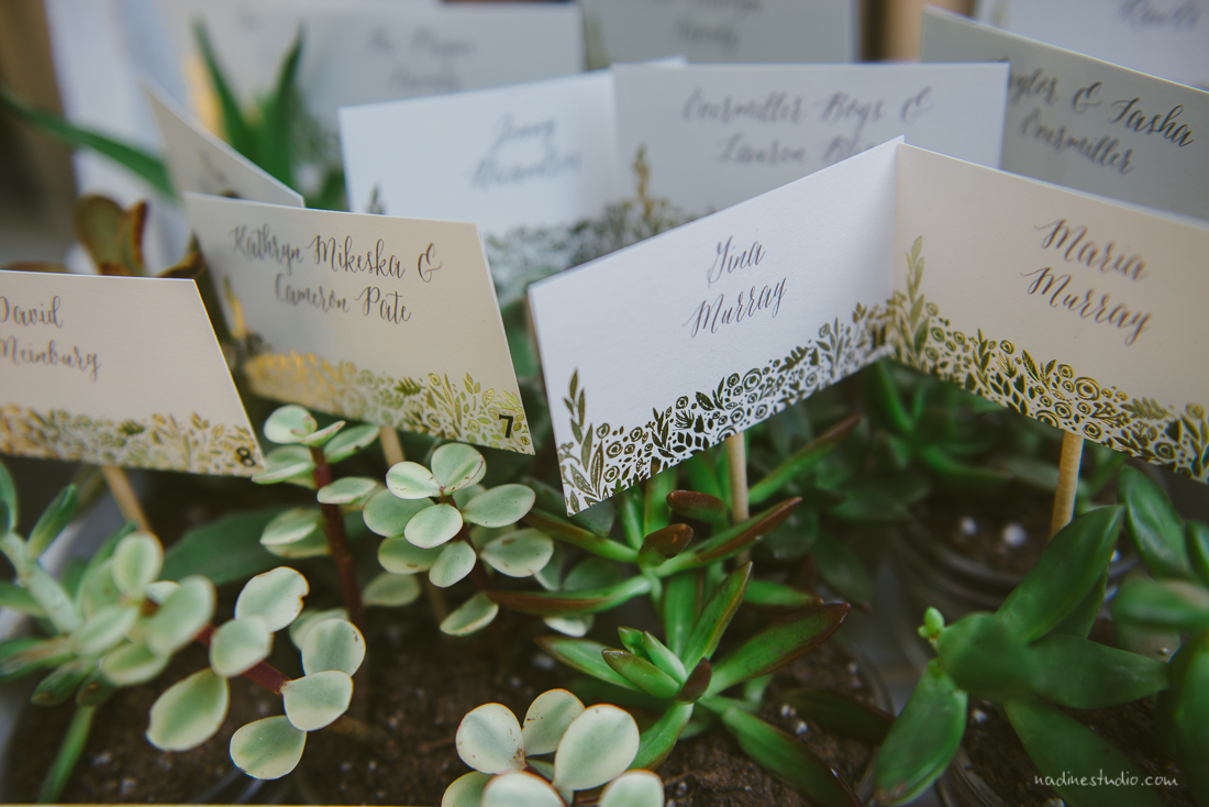 succulant green table numbers