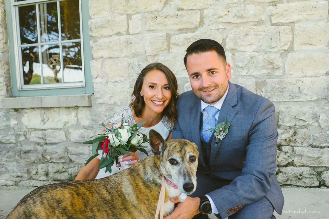 bride and groom and puppy dog ringbearer