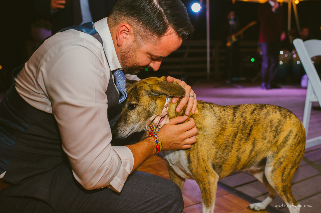 groom with ringbearer dog