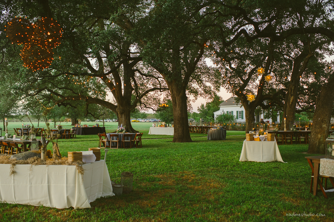 bastrop backyard wedding