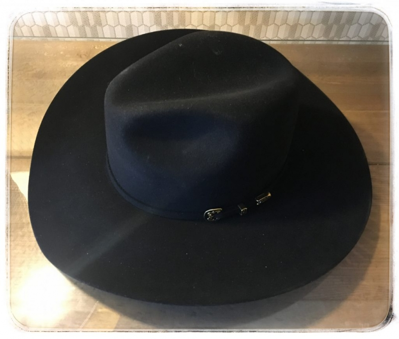 westworld sdcc black hat